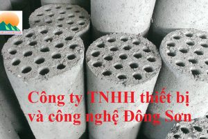 than-hoat-tinh-to-ong
